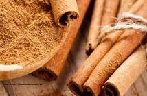 canela_cinnamon