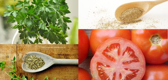 Molho de tomate ao sugo caseiro